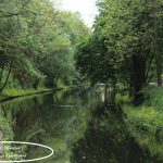 Promenade sur les berges du canal de Tourcoing